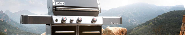 Weber gas grills are efficient grilling systems.